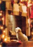 AVANTI PRESS クリスマスカード<犬×だんろ>
