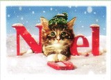 AVANTI PRESS クリスマスカード<猫×ぼうし×雪>