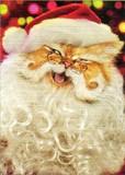 AVANTI PRESS クリスマスカード<猫×白ヒゲ×ぼうし>