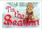 AVANTI PRESS クリスマスカード<猫×雪×ぼうし>