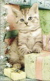 ART UNLIMTED クリスマスミニカード<猫×プレゼント>