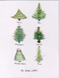 KOCO NEW YORK クリスマスカード <ツリー>