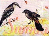 MADISON PARK GREETINGS グリーティングカード バースデー用 <鳥>