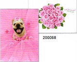 AVANTI PRESS スタンドアウトカード バースデー用 <犬×バラ>
