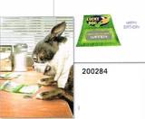 AVANTI PRESS スタンドアウトカード バースデー用 <犬>