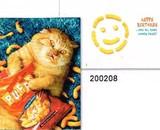 AVANTI PRESS スタンドアウトカード バースデー用 <猫×お菓子>