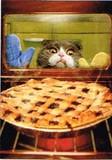 AVANTI PRESS グリーティングカード  [バースデー] 猫×お菓子作り