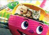 AVANTI PRESS グリーティングカード  [バースデー] 猫×遊園地
