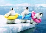 AVANTI PRESS グリーティングカード  [バースデー] ペンギン×浮き輪