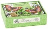 【在庫処分セール】ミッシェルデザインワークス グリーティングカード封筒付き【グリーンメドウ】