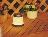 Lighting Garden Light