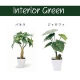 インテリアグリーン KU【床置き】【緑】【観葉植物】【フェイクグリーン】