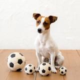 【LANCO】サッカーボール・シリーズ