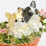 ★★セール中★★ フレンズチワワ 宝石箱(動物)犬 ジュエリーボックス ※まとめ割対象外