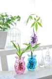 【Plant Style】プリズム グラス/パキラ/ジェリーボール/プラント/陶器/白/観賞植物/インテリア