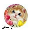 【HenryCats&Friends】スクリーンクリーナー 猫 ネコ ねこ 携帯 スマホ iphone プレゼント ギフト iPhone6