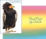 Stockwell Greetings グリーティングカード お祝い用 <鳥>