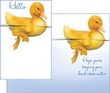 Greeting Card Duck
