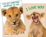 Stockwell Greetings グリーティングカード <LOVE×ライオン>