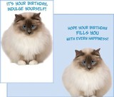 Stockwell Greetings グリーティングカード バースデー <猫>