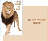 Stockwell Greetings グリーティングカード バースデー <ライオン>
