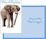Stockwell Greetings グリーティングカード バースデー <ゾウ>