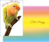 Stockwell Greetings グリーティングカード バースデー <鳥>