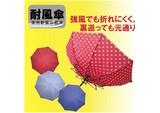 ◆耐風傘◆ 【ジュビア】婦人用雨傘 ドットプリント