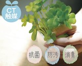 Catalyst Artificial Plants Clover Type