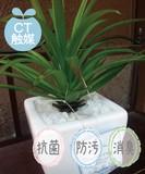 Catalyst Artificial Plants ARTIFICIAL GREEN Type