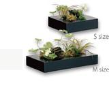 Way Green Art Green Arrangement Artificial Flower Artificial Flower Wooden