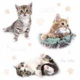Daisy  ペーパーナプキン <猫×CAT>