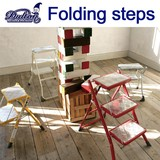 FOLDING STEPS LADDER