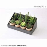 DECOR IMITATION MINI CACTUS アソート