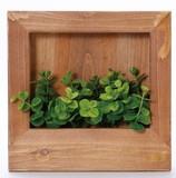 Green Wood Frame Square