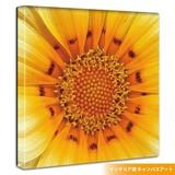 Sunflower Motif Pop Interior Panel