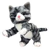 【いっしょがいいね】ビーンズぬいぐるみ(2Sサイズ) グレー猫