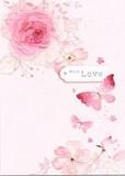 MADISON PARK GREETINGS バレンタイングリーティングカード <蝶>