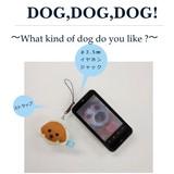 ドッグフェイス クリーナー【犬】【いぬ】