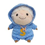 Soft Toy Hoody