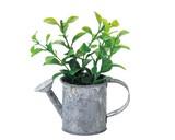 Easy Artificial Plants Ornamental Plant Interior