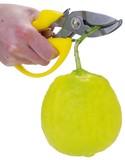 Fine Cut Pruning Scissors