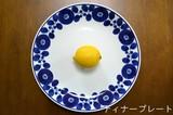 HAKUSAN TOKI HASAMI Ware Room Wreath Plate