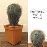 Artificial Plants Cactus Guard Cactus
