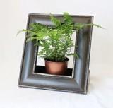 【インテリア・フレーム】グリーンやお花をアートのように飾って Wooden スペースフレーム Dark Brown