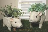 Garden Pig Farm Planter