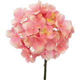 Hydrangea Pick Pink