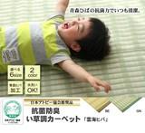 【日本製】【直送可】洗えるPPカーペット 『雲海ヒバ』アウトドアにも