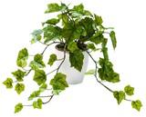 インテリアグリーン グレープリーフLB【緑】【観葉植物】【光触媒】【フェイクグリーン】