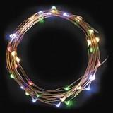 【LEDライト】40LED FAIRY LIGHT MULTI 【クリスマス】